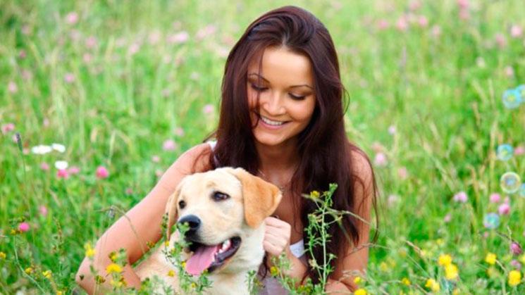 latinoamericanos-prefieren-a-sus-mascotas