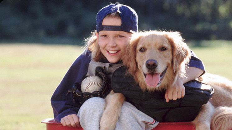 niño-con-cachorro