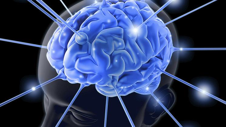 cerebrointelectual