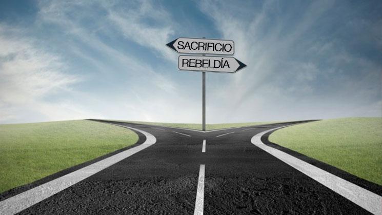 cual-camino-seguir