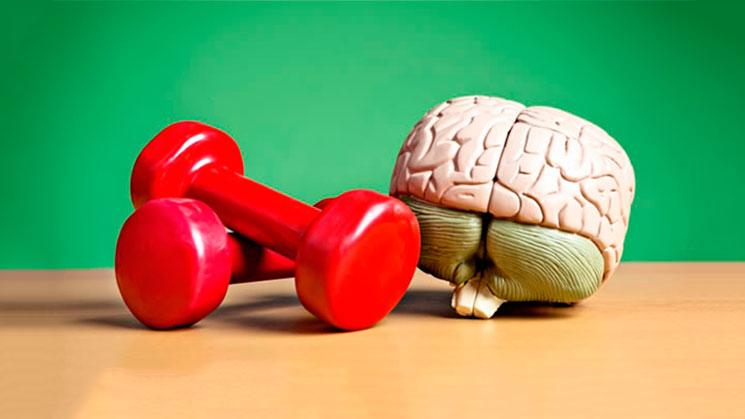 ejercicio-mejora-inteligencia