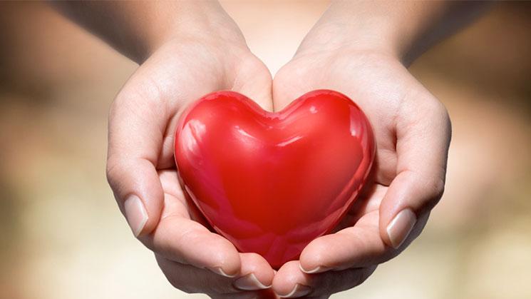 corazon-nuevo